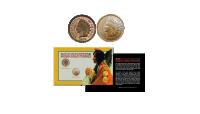 De Indian Head Pennies set 19e en 20e eeuw