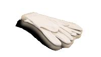 Starterskit voor verzamelaars, Katoenen Handschoenen