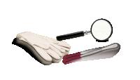 Starterskit voor verzamelaars, Loep, Muntpincet en Katoenen handschoenen
