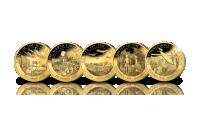 6-delige set 24-karaats goud vergulde munten