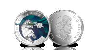 Geometry in Art, De ijsbeer in puur zilveren munt